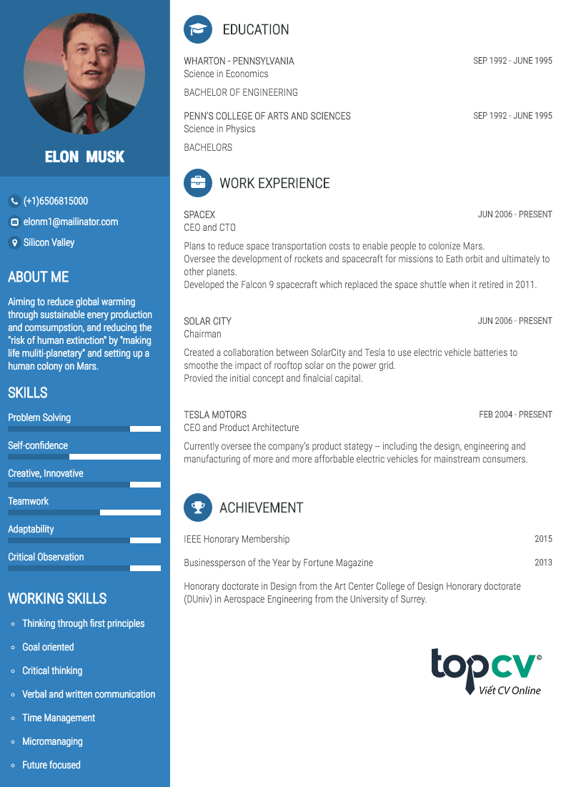 elon musk resume pdf download