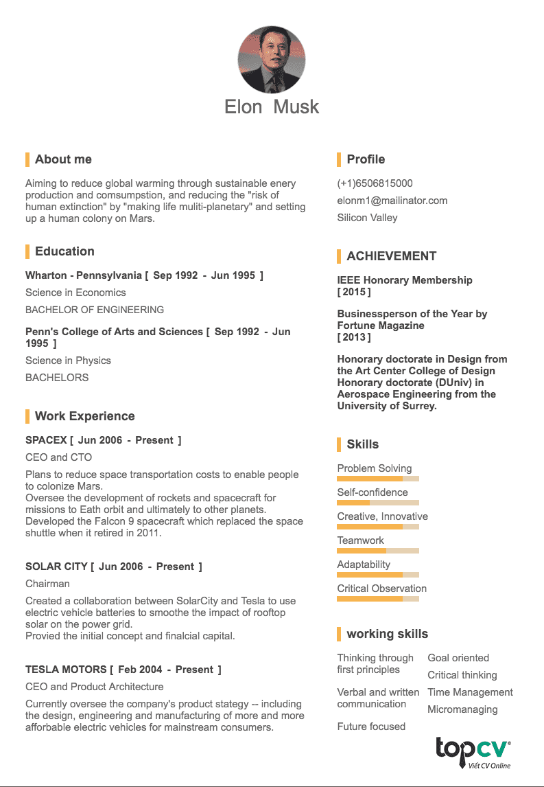 resume for ceo